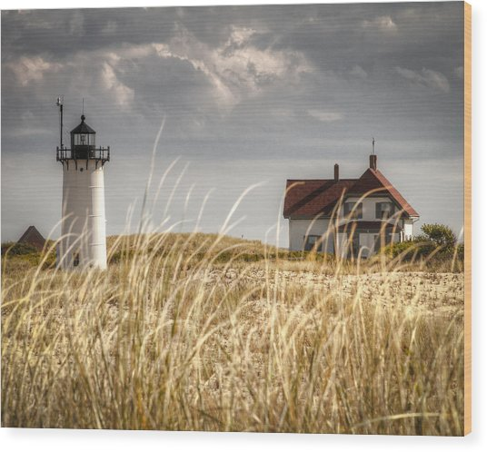 Race Point Light Through The Grass Wood Print