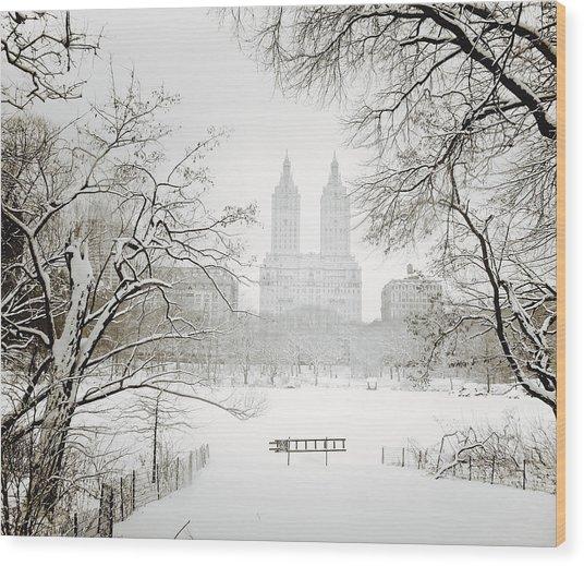 Through Winter Trees - Central Park - New York City Wood Print