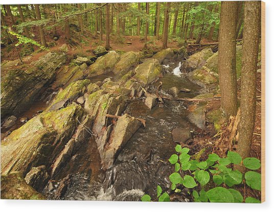 Thundering Brook Falls Vermont Wood Print