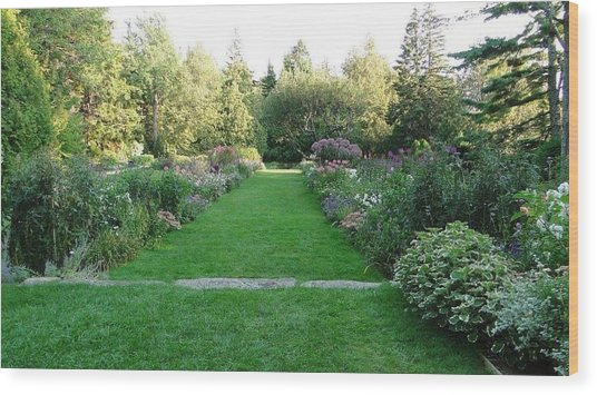 Thuya Gardens In Northeast Harbor Maine Wood Print