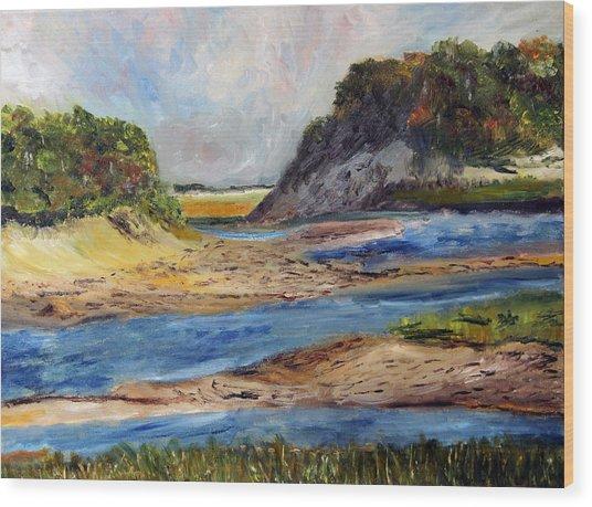 Tidal Dunes In Provincetown Wood Print