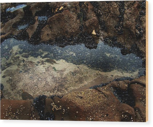 Tidal Wood Print