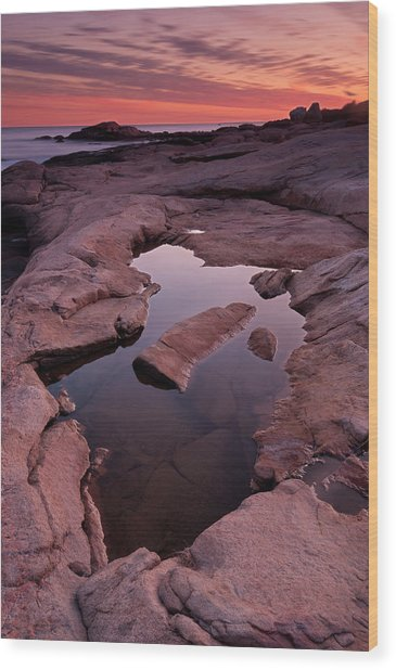 Tide Pool Geometry Wood Print