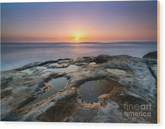 Tide Pool Sunset Wood Print