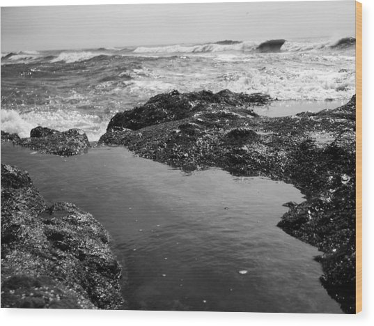 Tide Pool Wood Print