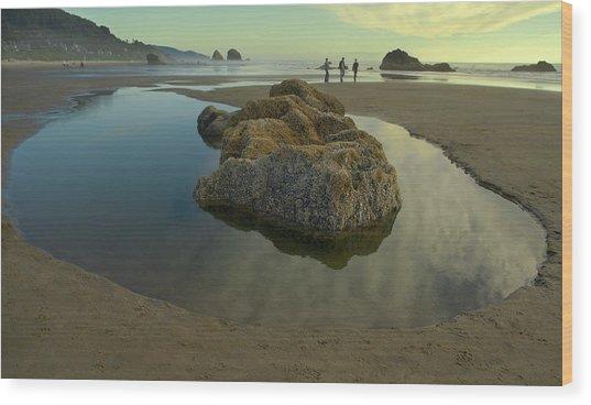 Tidepool Monolith Wood Print