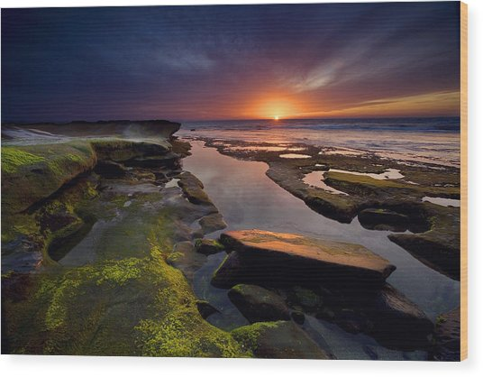 Tidepool Sunsets Wood Print