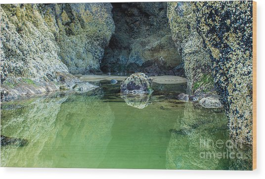 Tidepool Shades Of Green At Sunrise Wood Print