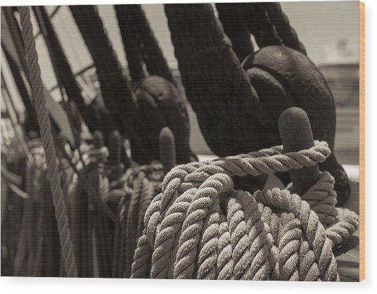 Tied Up Black And White Sepia Wood Print