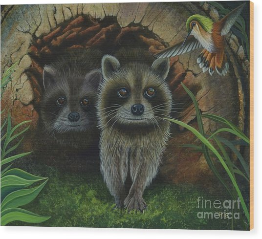 Tiffany And Raccoons Wood Print