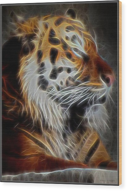 Tiger At Rest Wood Print