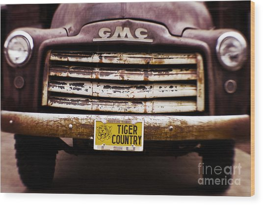 Tiger Country - Purple And Old Wood Print