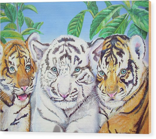 Tiger Cubs Wood Print