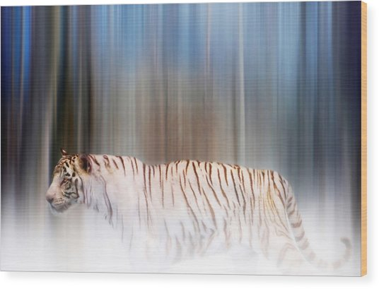 Wood Print featuring the photograph Tiger In The Mist by Valerie Anne Kelly