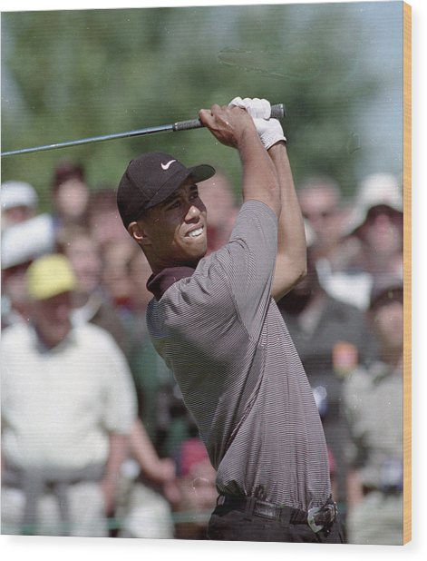 Tiger Woods Wood Print