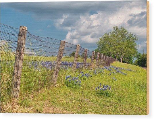 Tilted Fence Wood Print