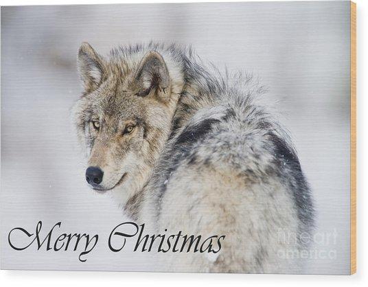 Timber Wolf Christmas Card 2 Wood Print