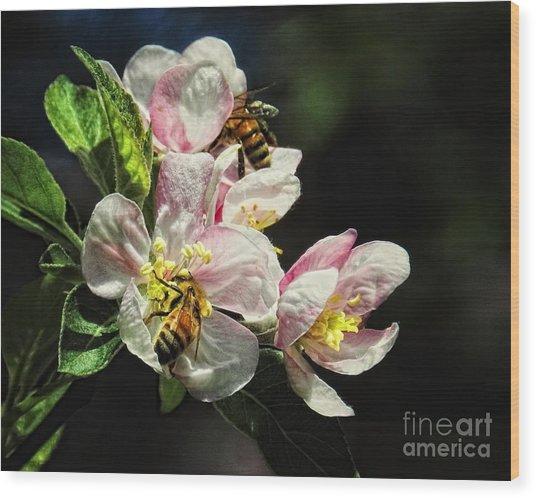 Time To Make The Honey Wood Print