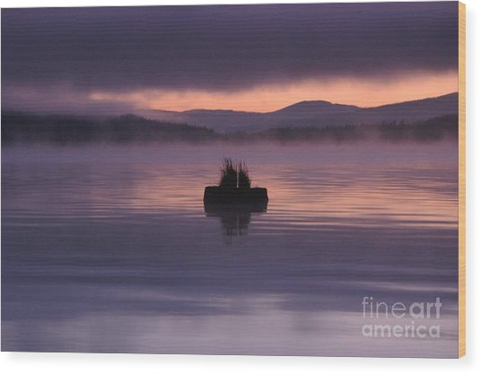 Timothy Lake Serenity Wood Print
