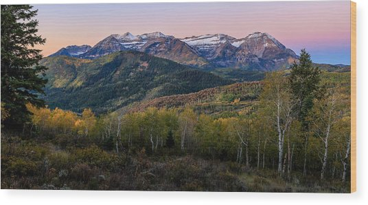 Timp First Light Wood Print