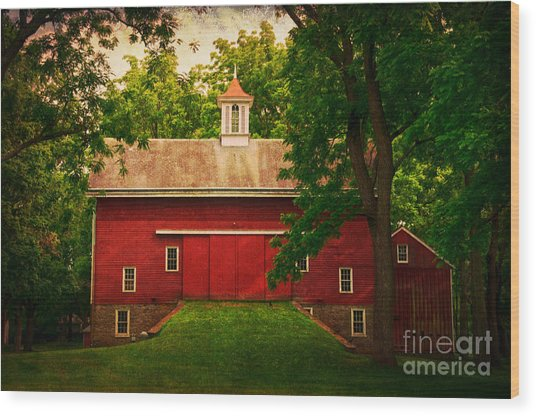 Tinicum Barn In Summer Wood Print