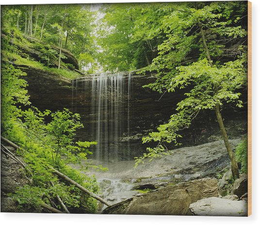 Tinker Falls Wood Print