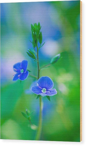 Tiny Bloom Wood Print