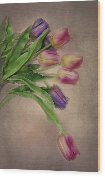 Tip Toe Thru The Tulips Wood Print