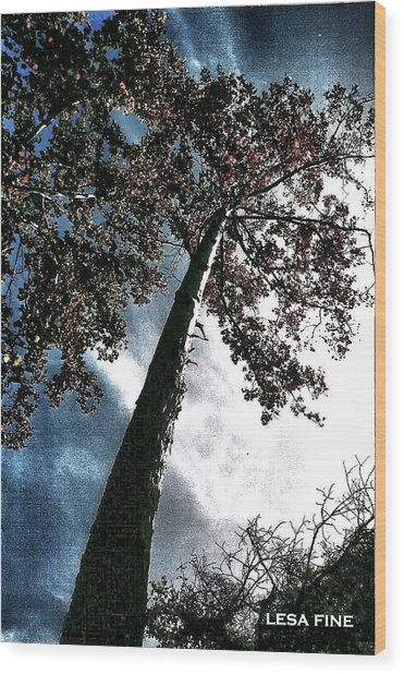 Tippy Top Tree II Art Wood Print