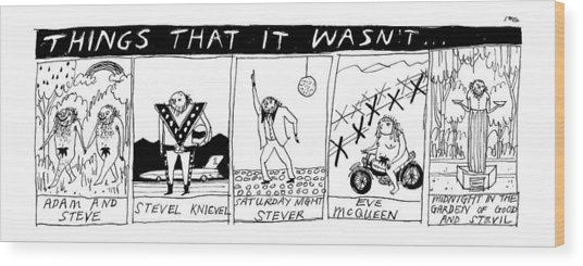 Title: Things That It Wasn't... Multi Panel Wood Print by Edward Steed