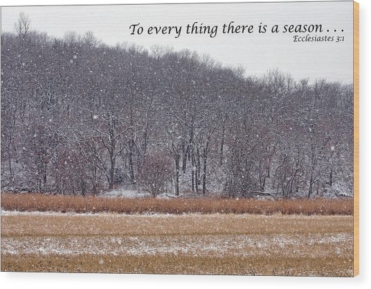 To Every Thing There Is A Season Wood Print by Nikolyn McDonald