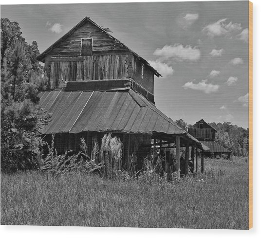 Tobacco Barns With Clouds Wood Print