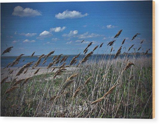 Tobay Beach Li Wood Print