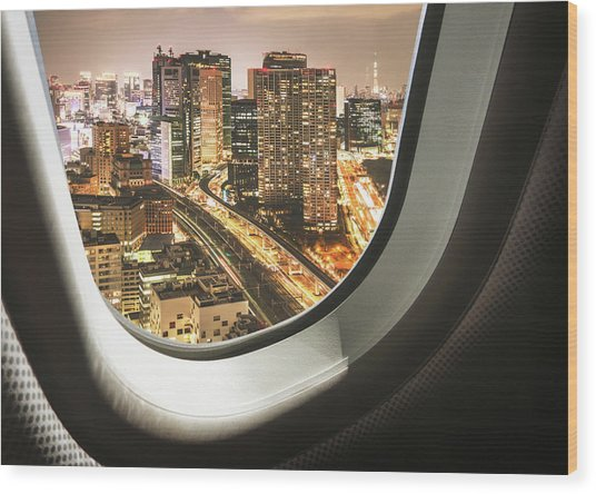 Tokyo Skyline From The Airplane Wood Print by Franckreporter