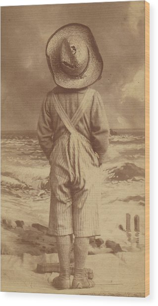Tom Sawyer At The Beach Wood Print