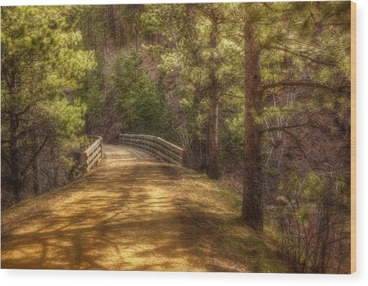 Top Of The Bridge Wood Print by Michele Richter