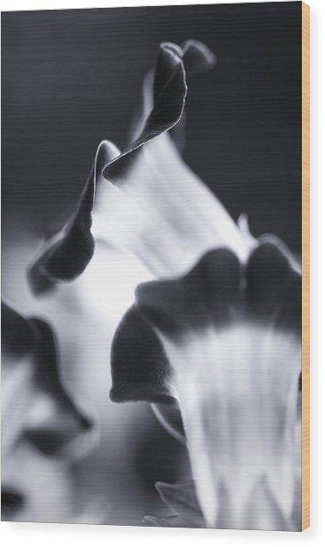 Torenia In Bw Wood Print
