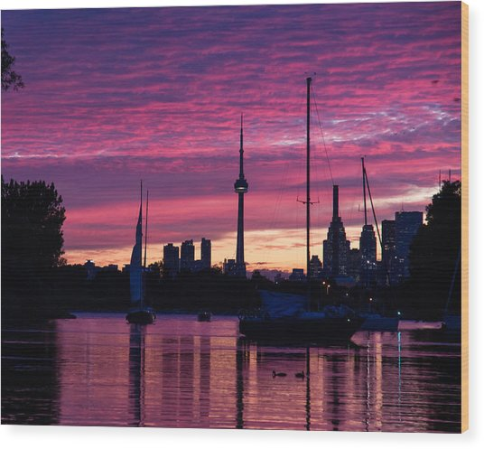 Toronto Skyline - The Boats Are Coming In Wood Print
