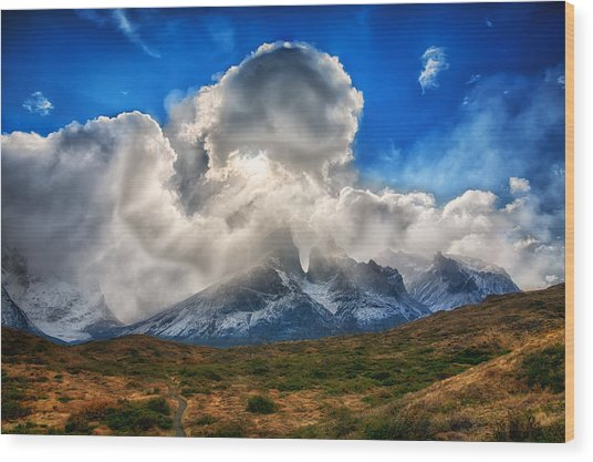 Torres Del Paine 2 Wood Print by Roman St