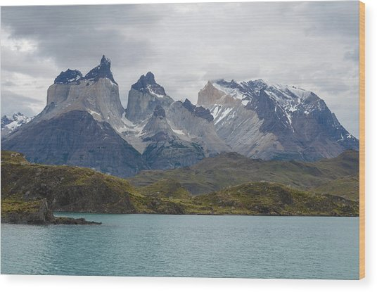 Torres Del Paine Wood Print by Eric Dewar