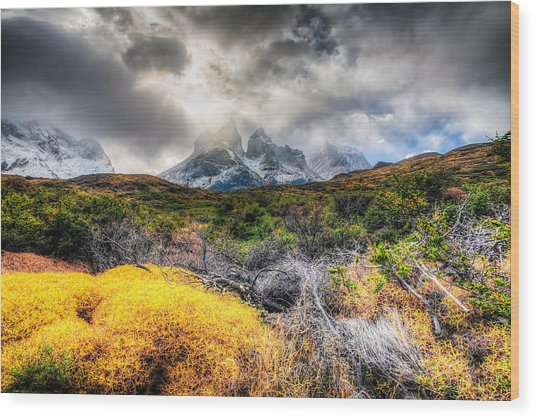 Torres Del Paine Peaks Wood Print by Roman St