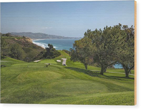 Torrey Pines Golf Course North 6th Hole Wood Print