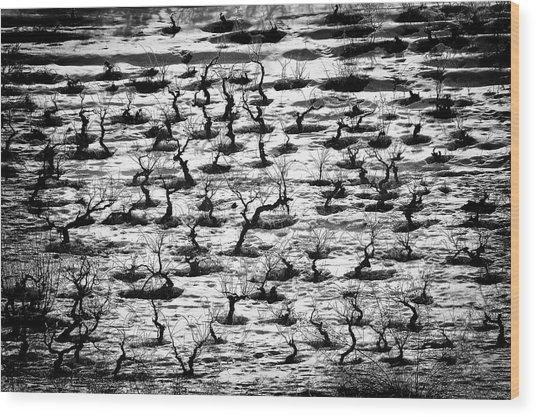 Tortured Souls. Wood Print