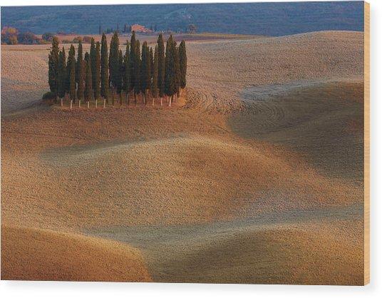 Toscana Wood Print