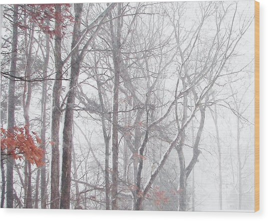 Touch Of Fall In Winter Fog Wood Print
