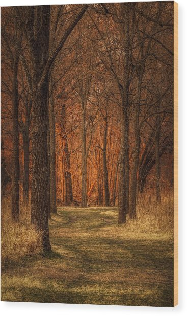 Nature's Cathedral Wood Print