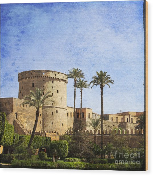Tower Of Mohamed Ali Citadel In Cairo Wood Print
