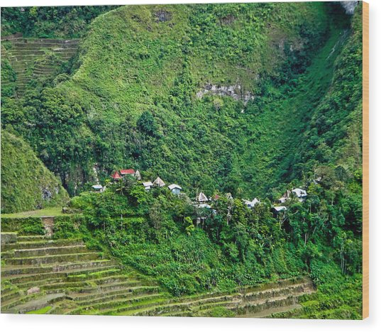 Town In Banaue Rice Terraces Wood Print