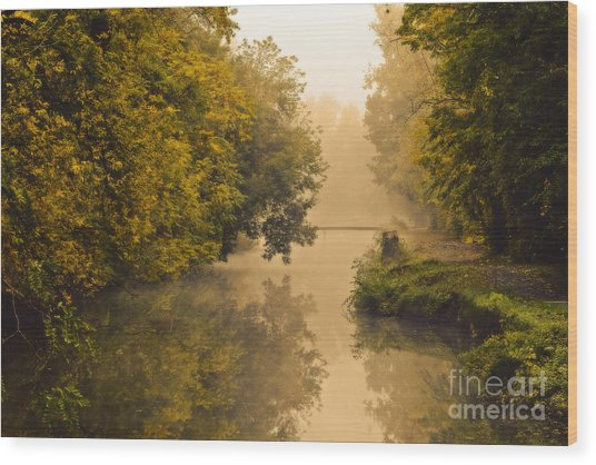 Towpath On The Champlain Canal Wood Print by Julie Palyswiat