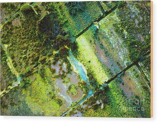 Toxic Moss Wood Print